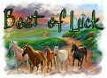 1Best of Luck-peaceonearth-MC