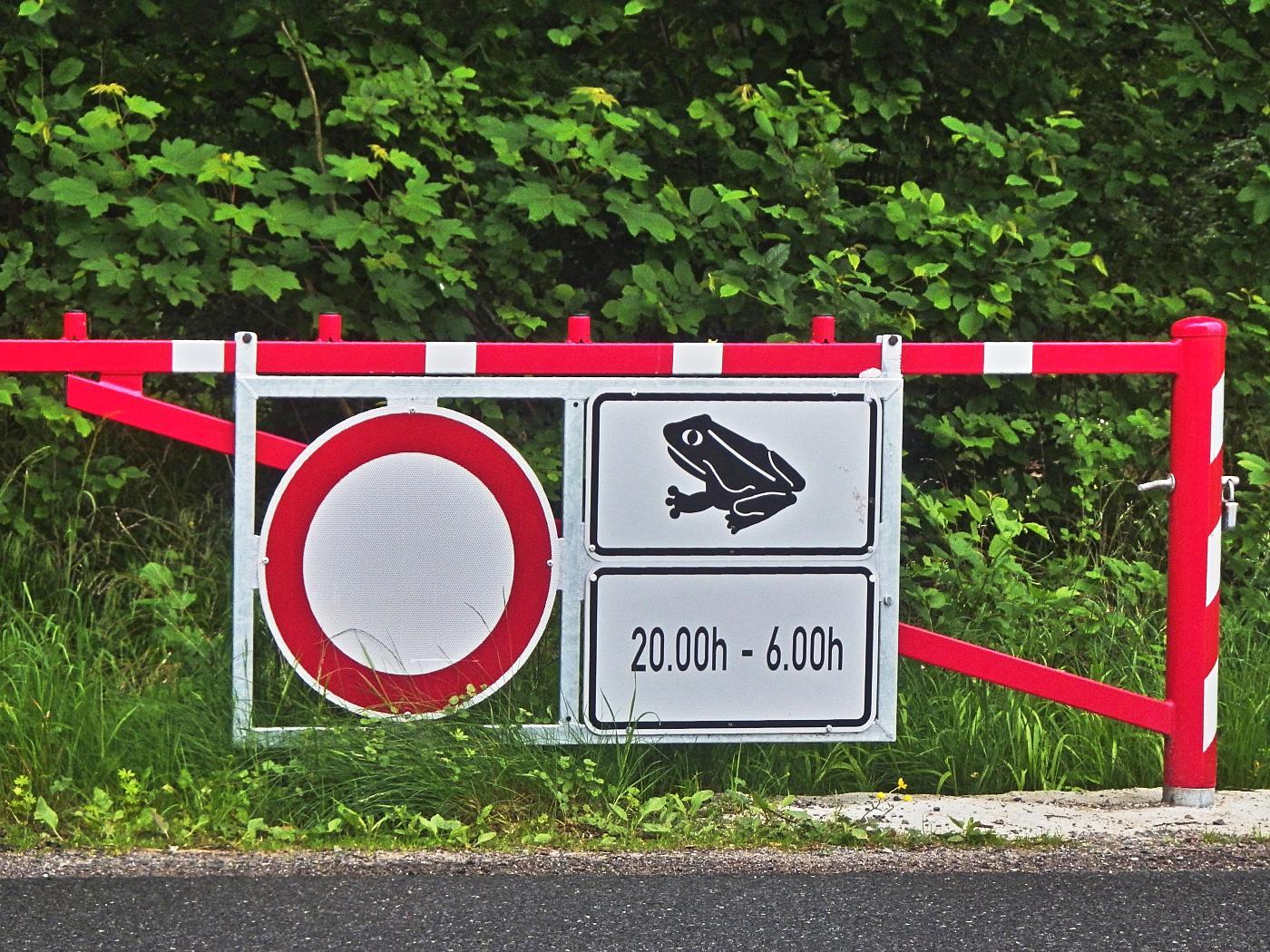 Im Oderwald wird nachts die Straße abgesperrt.