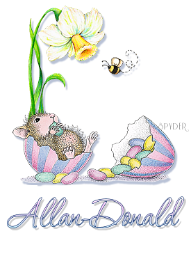 Allan-Donald hm easterbuzz