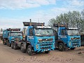 C12 MDL 
